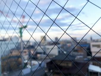 天窓用に網入りガラス