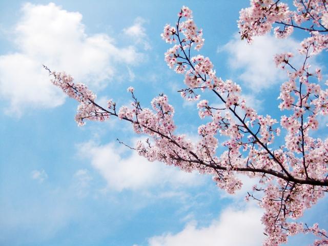 春と秋は塗装のベストシーズン!