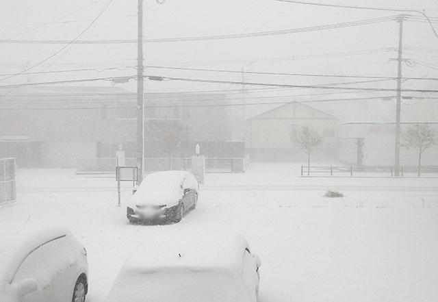 雪に強い塗料がある!