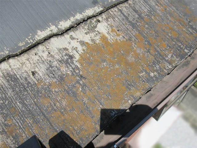 スレート屋根の塗装の状態をみる