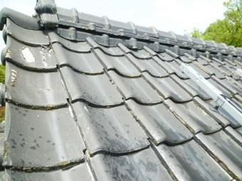 塗膜の剥がれた屋根 そろそろ塗装しよう