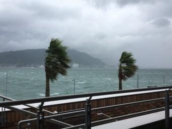 台風 強風 2019.1.27