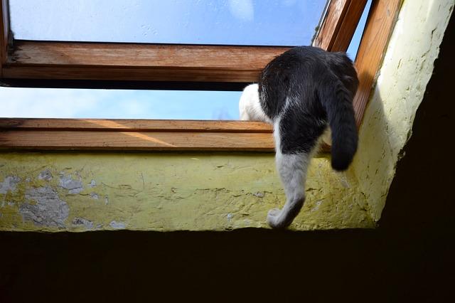 天窓の撤去は考え直してみて!